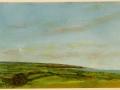 Tom Newton - North Cornwall west coast